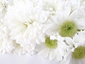 0広島市佐伯区で「しめやかな生活保護葬儀」を執り行いました20